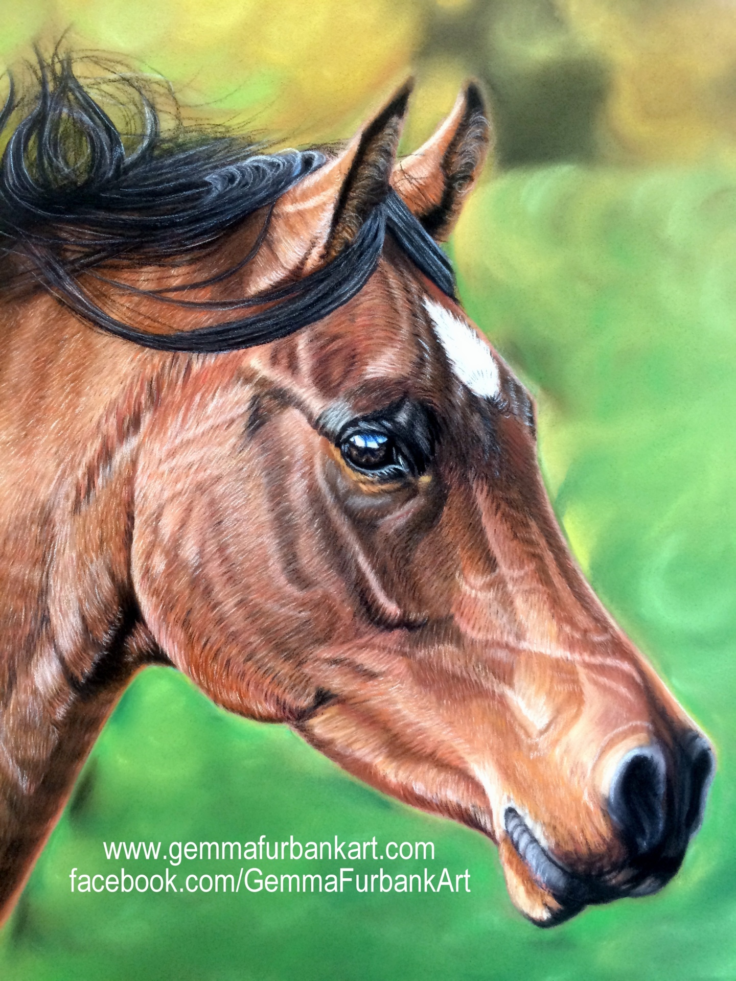 Bay Horse in Soft Pastel